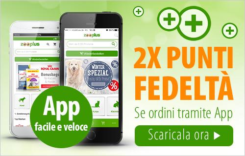 Vai all'app >>>