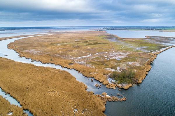 Die Schadefähre Eine Insel für Watvögel