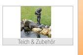 Teich & Zubehör