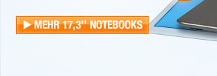 "17,3"" Notebooks"