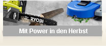 Mit Power in den Herbst