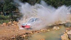 Zwei Tote bei Rallye-Unfall in Irland