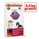 2,5 kg GRATIS! - Con 12 kg di secco Hill's Science Plan... >>