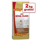 2 kg GRATIS! - Bonusbag Royal Canin Breed (14 kg) >>