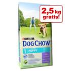 2,5 kg GRATIS! - Bonusbag Tonus Dog Chow (16,5 kg) >>