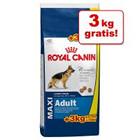 3 kg GRATIS! - Bonusbag Royal Canin Size (18 kg) >>