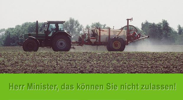 © Bernhard Nimtsch / Greenpeace