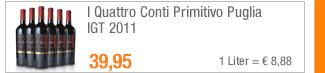 I Quattro Conti                                             Primitivo Puglia IGT 2011
