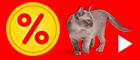 % bitiba Schnäppchenecke für Katzen - Dauertiefpreise %