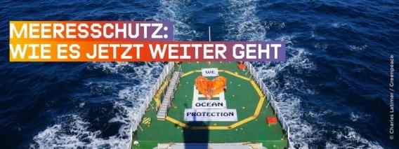 Greenpeace-Schiff